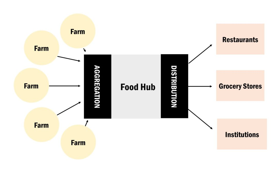 Food Hub Feasibility Study Published